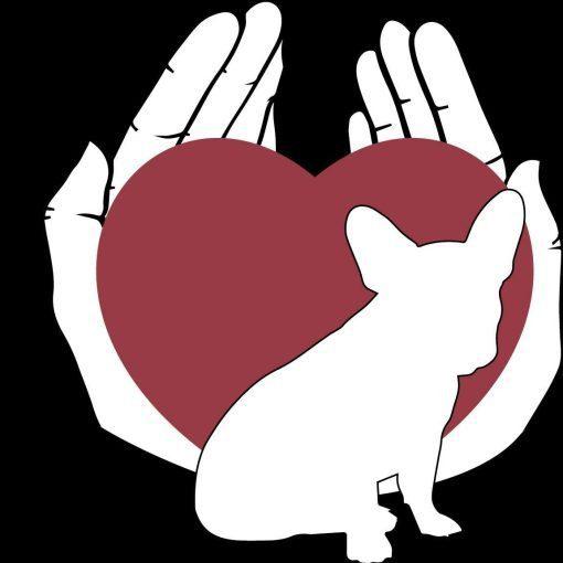 logo Steunfonds franse bulldog in medische nood bij hun baasje