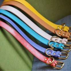 DIY collar rainbow