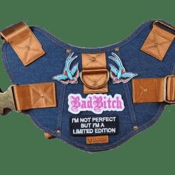PetHaus battle harnas patch1