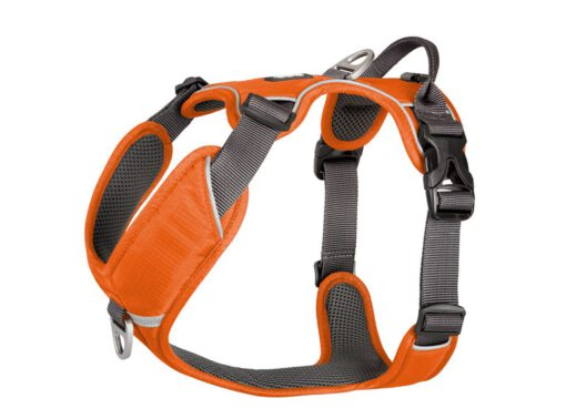 DOG COPENHAGEN comfort walk pro harness (orange sun 01)