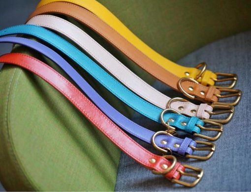 DIY collar rainbow